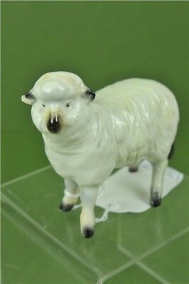 Beswick Sheep Lamb slight chip on ear