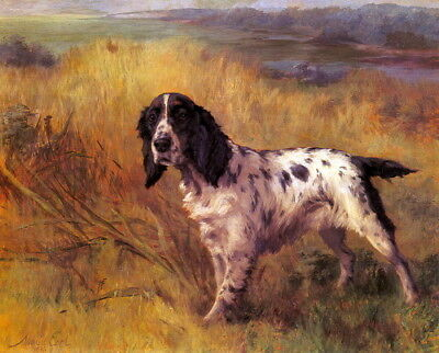 1936~Maud Earl~ English Setter Puppy Dog on Point in Field~NEW Large Note Cards