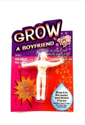 GROW A BOYFRIEND FUNNY GADGET Xmas Gift Ideal Present for Her Girl Woman Kids