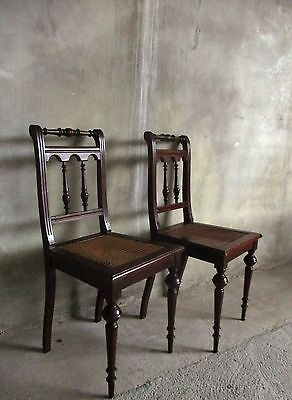 2 Edwardian mahogany dining chairs with a woven seat