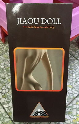 1/6 JIAOUDOLL 002 Seamless Middle Bust Female Body Same As Phicen Skeleton New