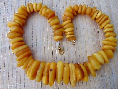 Genuine Egg Yolk Honey Butterscotch Baltic Amber stones Necklace 57 grams