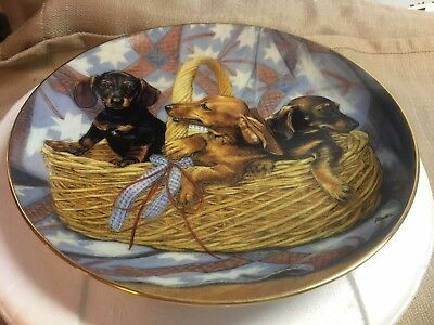 Three's Company dachshunds collector plate by Susie Morton Danbury Mint, org pkg