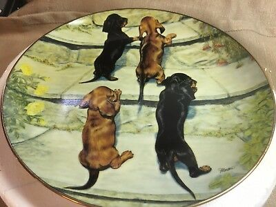 Careful Climbers dachshunds collector plate by Susie Morton Danbury Mint org pkg