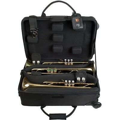 Smooth ProTec Triple Horn IPAC Case with Wheels