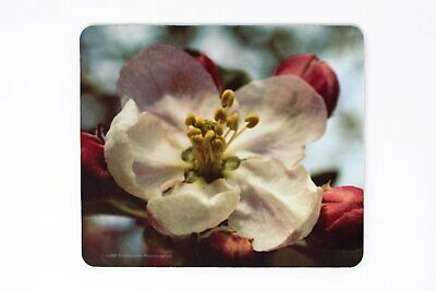 Mousepad, Appleblossom Design