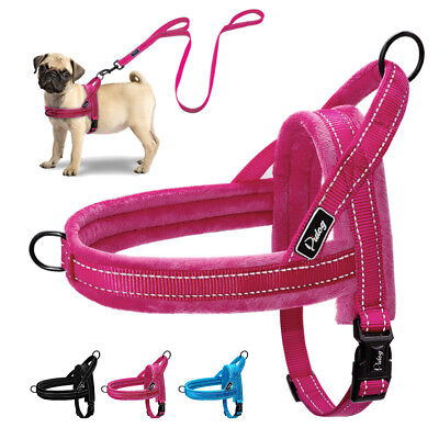 Reflective Padded No Pull Dog Harness and Leash Front Leading for Large Dog XS-L