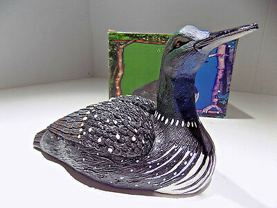 """Water Bird Common Loon Hand Painted 8 """" Resin Replica Brand New in The Box"""