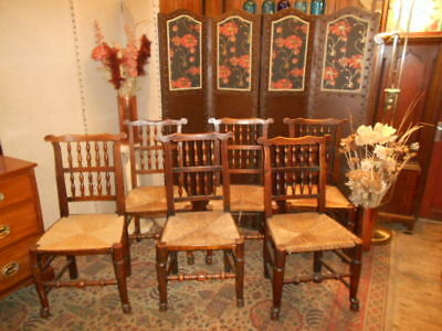 Antique early 20th century ash  elm set 6 ladder spindle back rush seats chairs