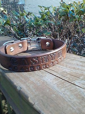 1in. Leather Dog Collar Personalized with name and phone