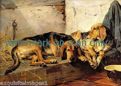1878~Two Large Bloodhound Dog Dogs Laying on Hay~ NEW Large Note Cards