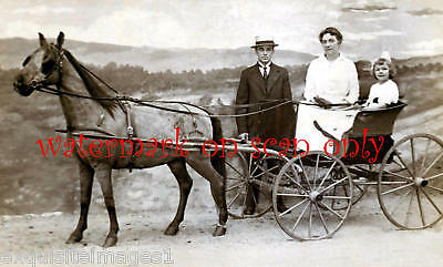 Antique Photo~Horse & Carriage~Family NEW Lg Note Cards