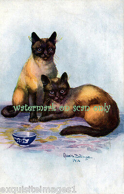 1916 Antique Art~Beautiful Siamese Cats~Blue Bowl~ NEW Large Note Cards