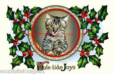 """Antique Art~""""Who Me?"""" Cute Tabby Christmas Kitten~Holly~NEW Large Note Cards"""