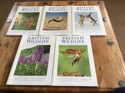 British Wildlife Magazines  5 Issues Vol 16 (2005)