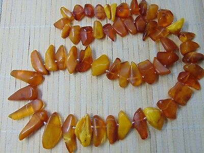 Old Natural Honey Egg Yolk Cognac Baltic Amber stones Necklace 65 grams