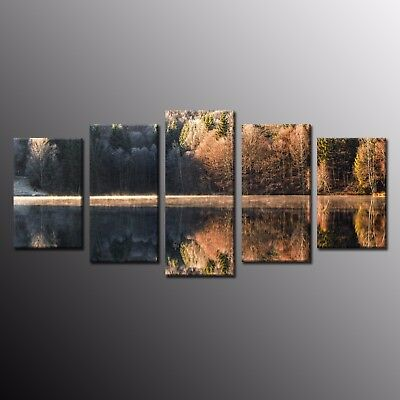 Large Wall Art Picture Print on Canvas Modern Autumn Landscape Tree Fall 5pcs