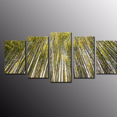 Large Modern Canvas Wall Art Print Painting Bamboo Forest Photo Poster 5pcs