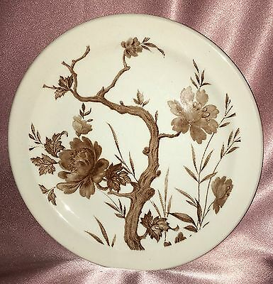 Vintage Retro ~ New Zealand Ironstone Side Plate Dish ~ Estate Collectable