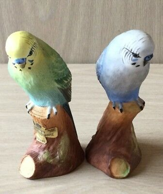 Vintage Pair Of Crown Staffordshire Budgerigars