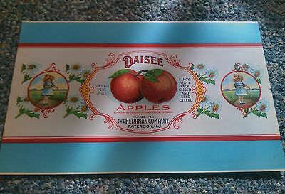 Daisee Apples 1920's Lithograph Can Label Herrman Co. Patterson New Jersey. Old