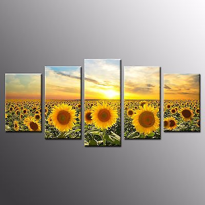 FRAMED Large Canvas Painting Wall Art Giclee Sunflower Photo Canvas Print-5pcs