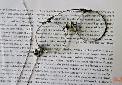 Antique Oxford Pince Nez Eyeglasses 14k GF Bridge, necklace Buffalo, NY Optical