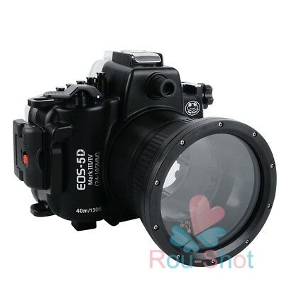 Seafrogs 40m/130ft Underwater Diving Case Housing for Canon EOS 5D Mark Ⅲ/ Ⅳ