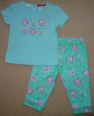 NWT Sprout Baby Girls Owl Pants Top Summer Pyjamas Size 0 or Size 1