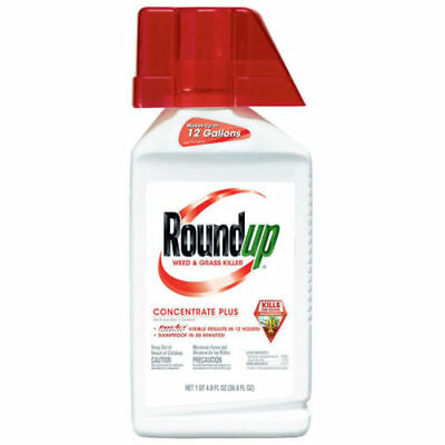 Scotts Ortho Roundup 5100610 Weed & Grass Killer Plus, 36.8-oz. Concentrate -