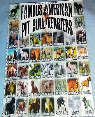 Famous American Pit Bull Terriers Book