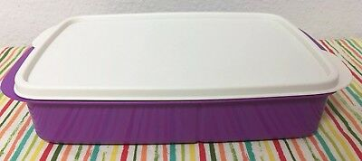 Tupperware Lunch N Dish Divided Container 4 Cups Purple w/ Ivory Seal New