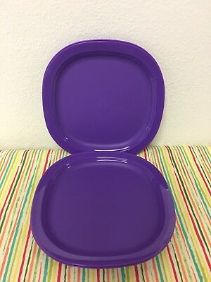 Tupperware Luncheon Dinner Plates Set of 4 Purple 9.5u201d New : purple dinner plates - pezcame.com