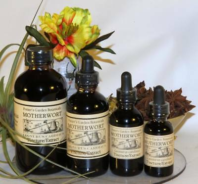 MOTHERWORT circulation menopause mood nerves Traditional Folk Remedy Tincture ~