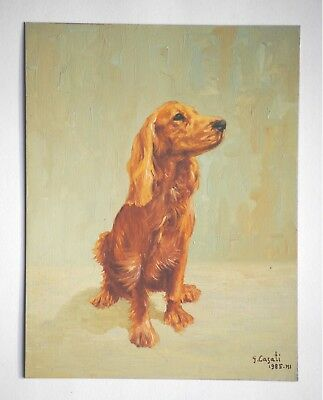 Cane. Dipinto olio su rame, G. Casati 1985. Puppy. Dog, oil painting on copper.