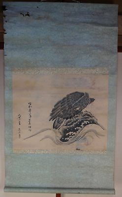 Antique Japanese Tombi hawk Zen painting scroll art 1900s hand painted on paper