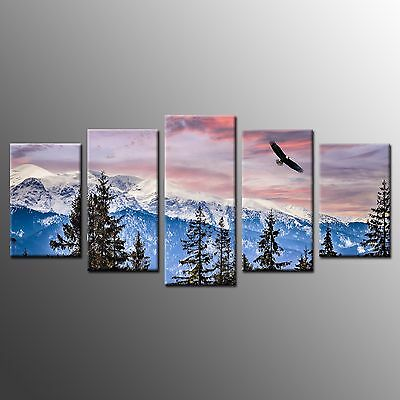 FRAMED Wall Canvas Art Snow Mountain Eagle Wrapped Canvas Painting Print-5pcs