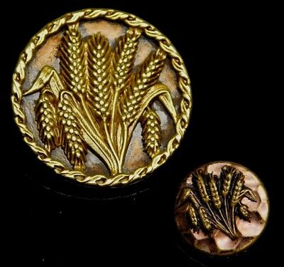 PAIR of ANTIQUE Vintage Brass BUTTONS WHEAT Plant Life Large and SMALL