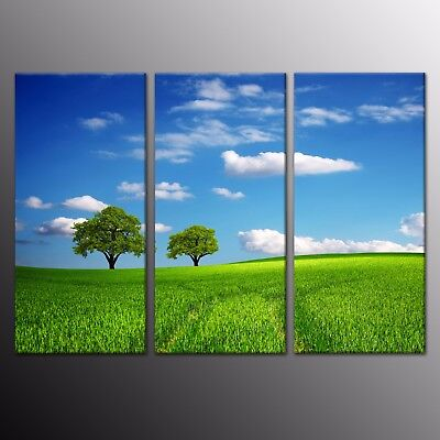 HD Canvas Print Painting Picture Wall Art Green trees Blue Sky Home Decor 3pcs