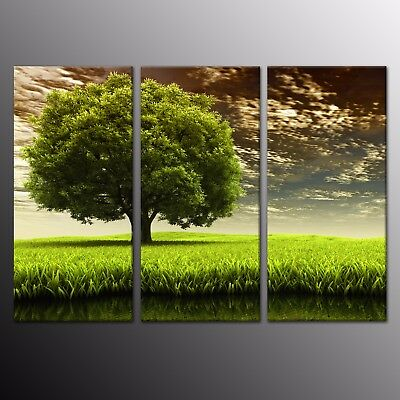 HD Canvas Prints Modern Home Decor Wall Art Painting Green Tree Picture 3pcs