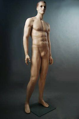 Realistic Male Mannequin, Includes Steel Base & Rods, Made of Fiberglass (gm24)