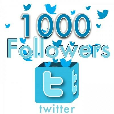1000+ HIGH QUALITY TWITTER FOLLOWERS-INSTANT START-NO EGGS-GUARANTEE 360 DAYs