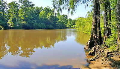 10 AC WATERFRONT, Access to Ocean Gulf, PENSACOLA, Florida / Pre-Foreclosure