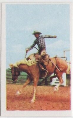 Rodeo Trade Card