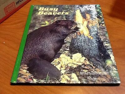 Busy Beavers National Geographic 1988 hardcover