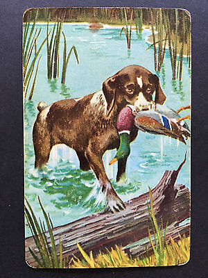 Swap Card Vintage Hunting Dog with Duck Blank Back