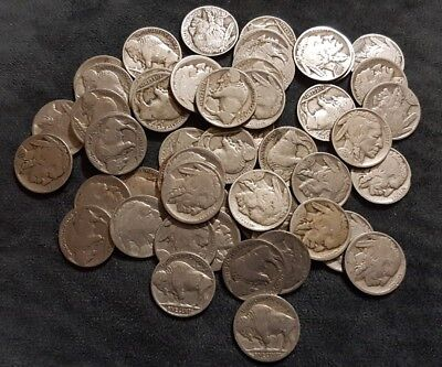 USA Liberty & Indian Head/Buffalo Nickel Coins x 51 all dated or partially dated
