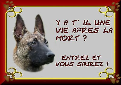 Plaque Metal Attention Chien , Berger Belge Malinois 3