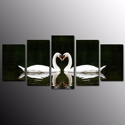 5 Panels Home Decor Love Swans Animals Birds Wall Art Canvas Print Pictures