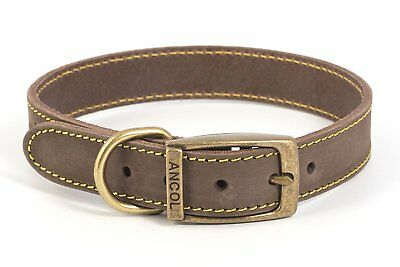 Ancol quality bridle leather dog collar/lead.Blue,Brown,Grey. XS,S,M,L💕